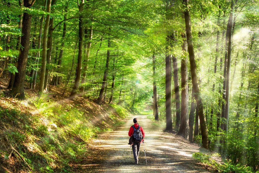 La marche nordique permet de se sentir bien psychologiquement